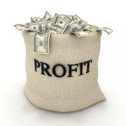 online profits in bags of money
