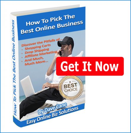 How to Pick the Best Online Business eBook