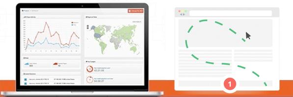 Monitor Visitor Behavior on Your Website
