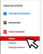 YouTube MP4 Individual Download- Step 2